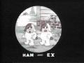 hamnex